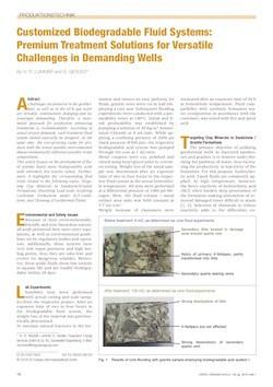Publikation-Fangmann Energy Service-Lummer_EEK1